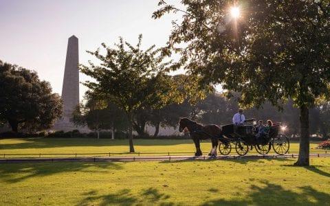 Horse and Carriage Ride through Phoenix Park Dublin