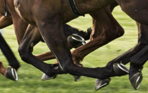Maldron Hotel Portlaoise Punchestown Races