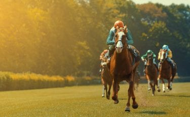 Leopardstown Racing