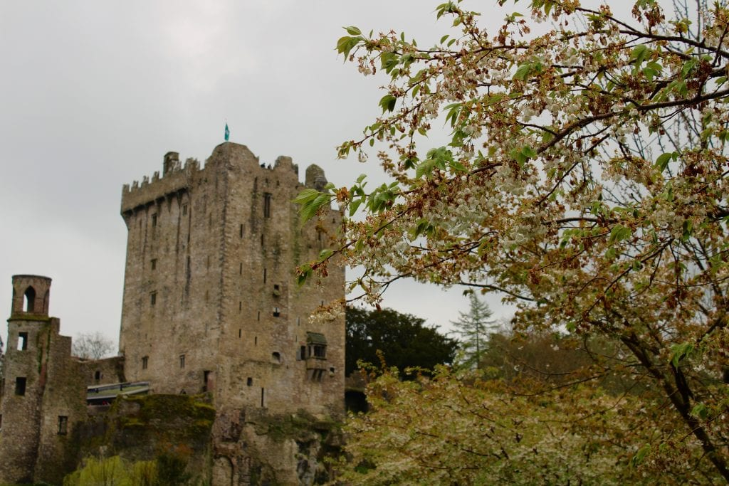 day tours from cork ireland